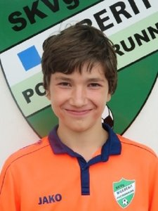 Viktor Gibisch